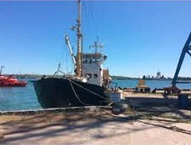Про використання технічних засобів контролю на рибальських суднах в Україні