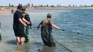 Чорноморський рибоохоронний патруль рятував дельфінів