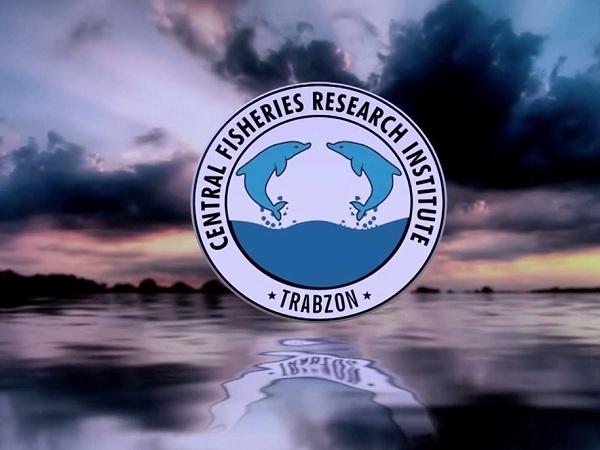 Держрибагентство запрошує громадян пройти навчання на онлайн-курсах Центрального науково-дослідного інституту рибальства та аквакультури