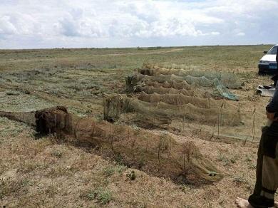 В Каркіністській затоці порушники завдали збитків на майже 25 тис.грн