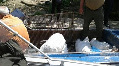 Протягом травня вилучено 600 кг водних біоресурсів, - Чорноморський рибоохоронний патруль