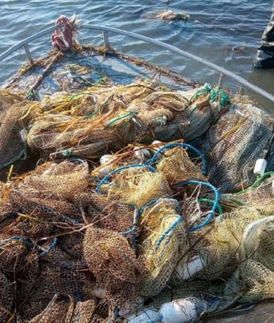 В березні Чорноморський рибоохоронний патруль викрив порушень зі збитками майже 192 тис грн