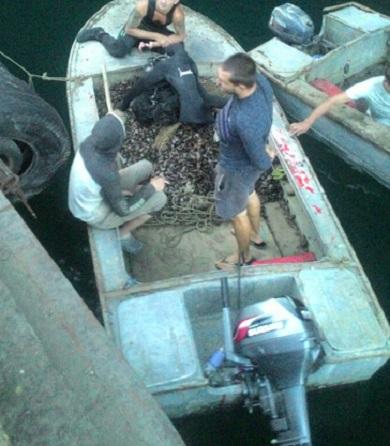 В акваторії Чорного моря зафіксовано порушення Правил промислового рибальства, - Чорноморський рибоохоронний патруль