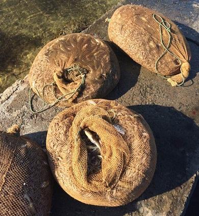 У Каркінітській затоці викрито порушення зі збитками на понад 130 тис. грн, - Чорноморський рибоохоронний патруль